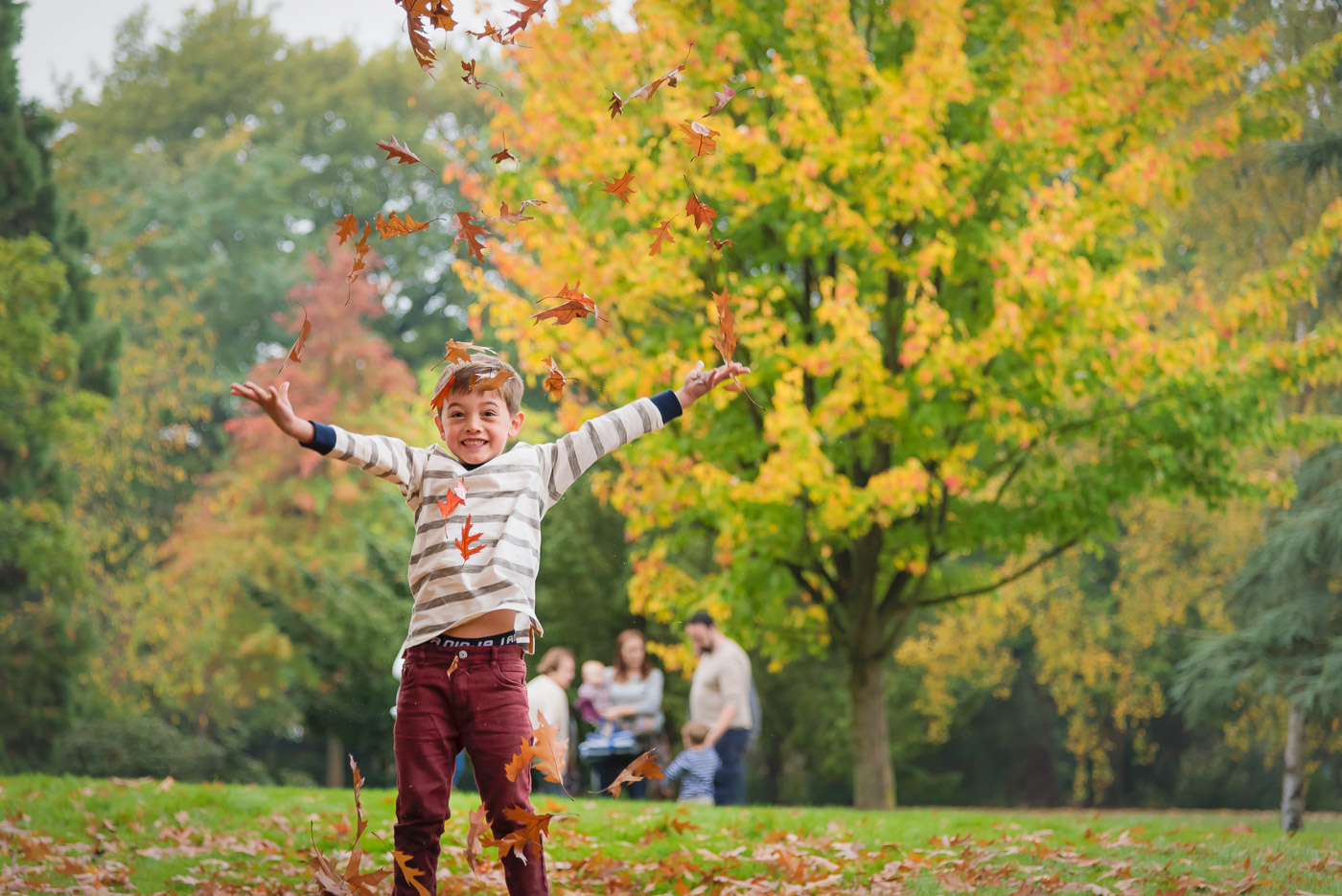 Portrait of a boy throwing autumn leaves in the air with his family waiting for him in background