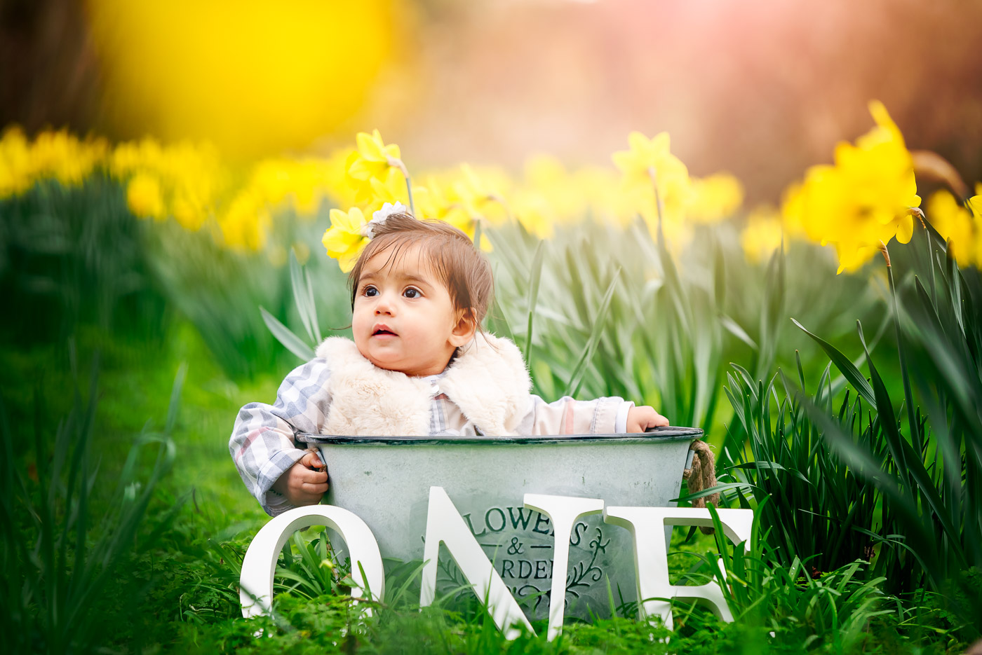 Little girl in a flower bucket among daffodils is turning one