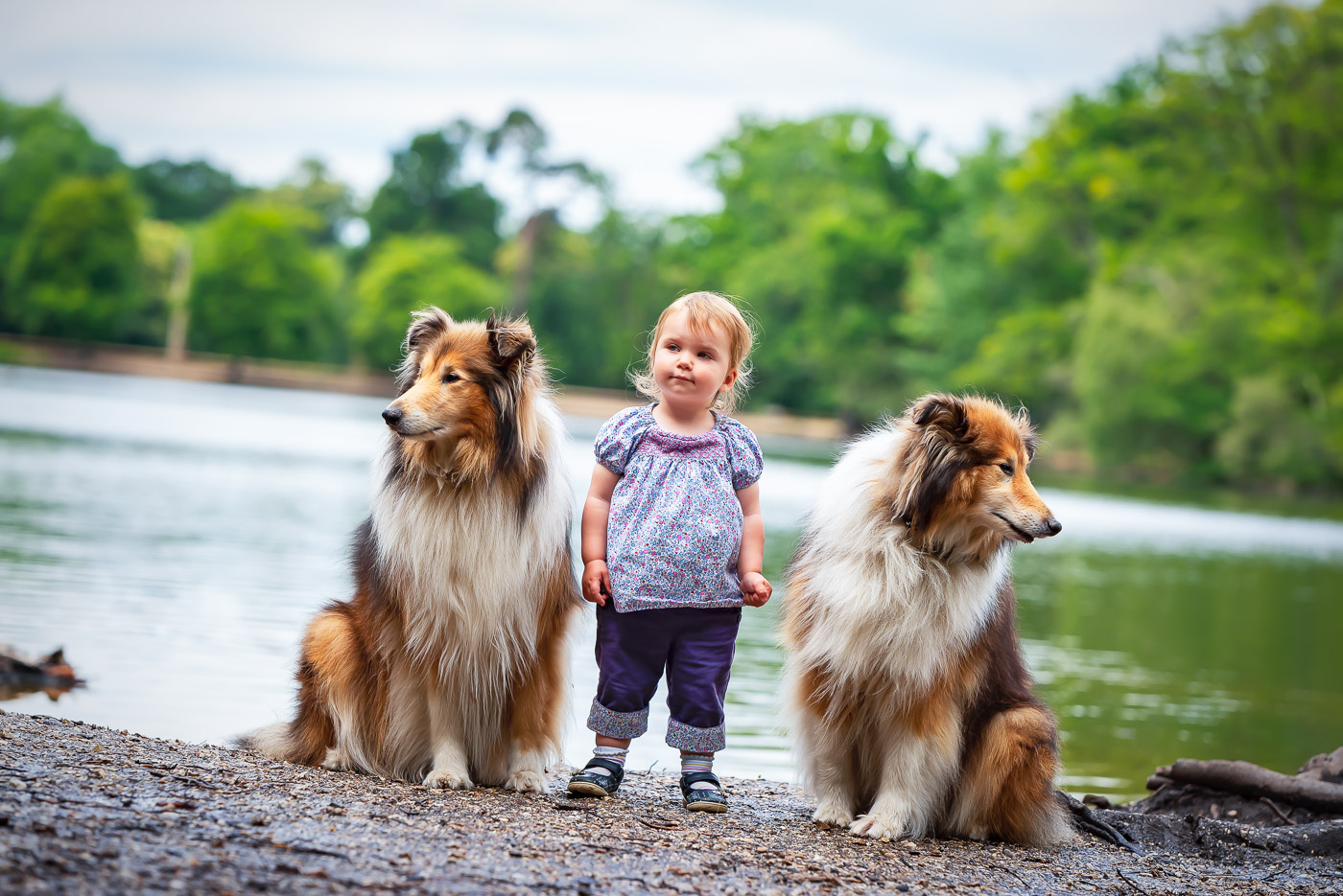 Lovely girl with two dog guardians at the lake on an outdoor family photoshoot