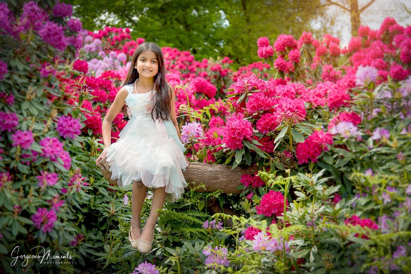 Beautiful young girl in white dress sitting on a log surrounded with vivid rhododendrons