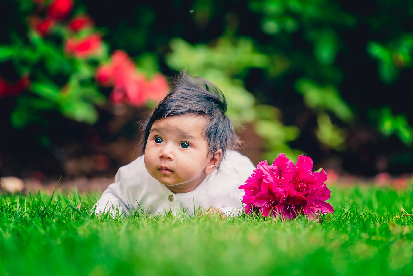 Baby girl with big sparkling eyes lying on mowed grass with large rhododendron flower